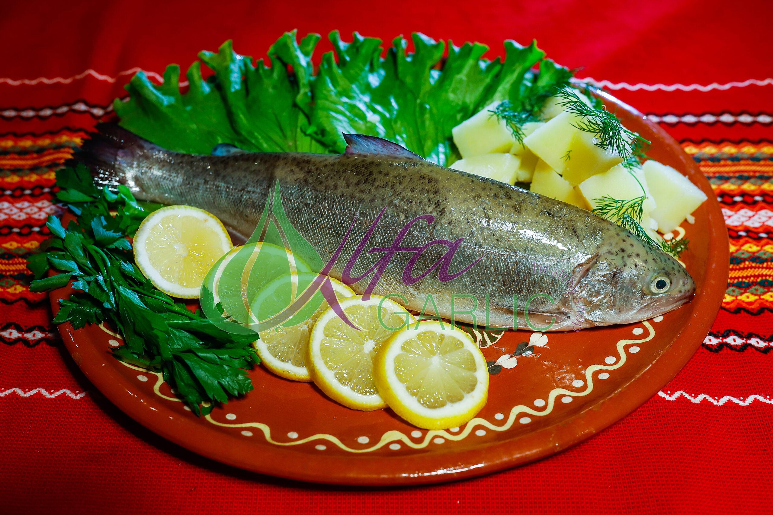 Американска пъстърва, Риба, Прясна риба, Жива риба