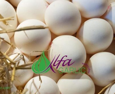 Бели яйца от свободни кокошки